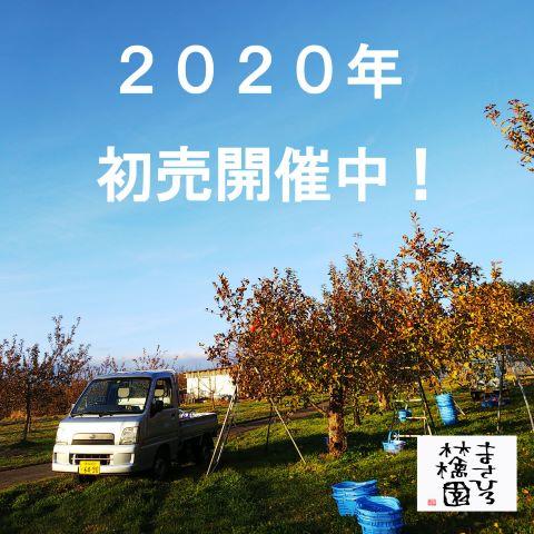 20200106初売り告知小