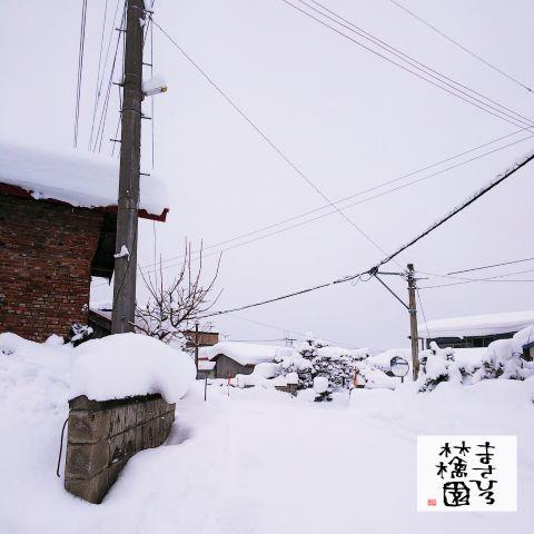 20200210積雪小