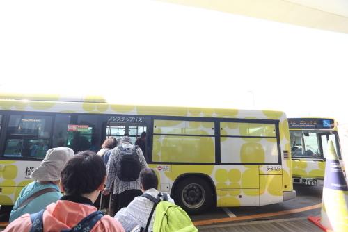 19DP8307.jpg