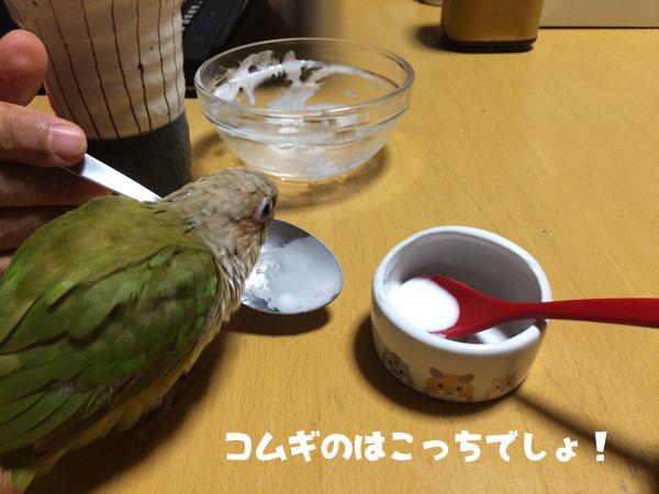 1IMG_9293.jpg