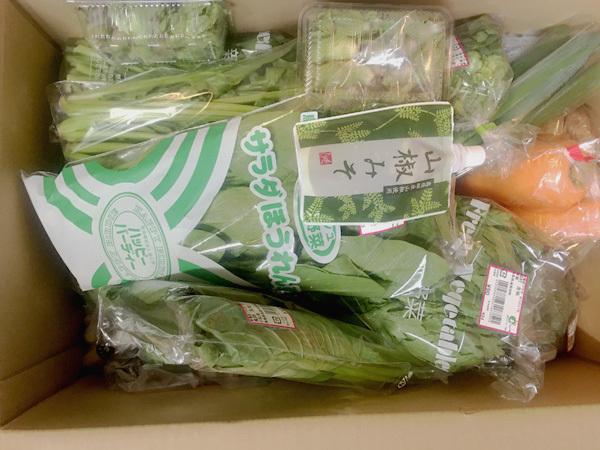 2-10野菜2回目