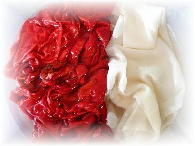 紅絹2-2