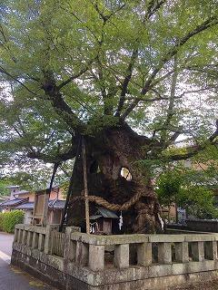 中山神社15