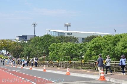 rugbykumagaya27.jpg