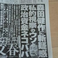 森田知事の記事