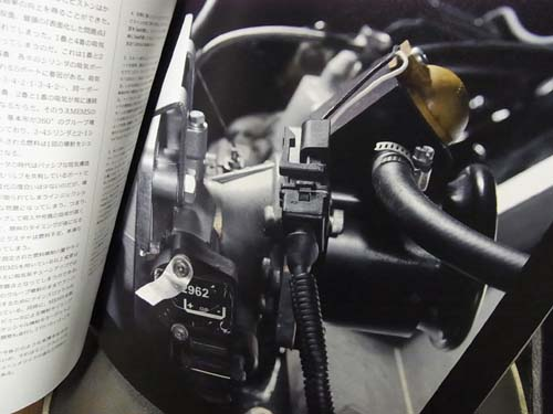 RIMG0003 のコピー