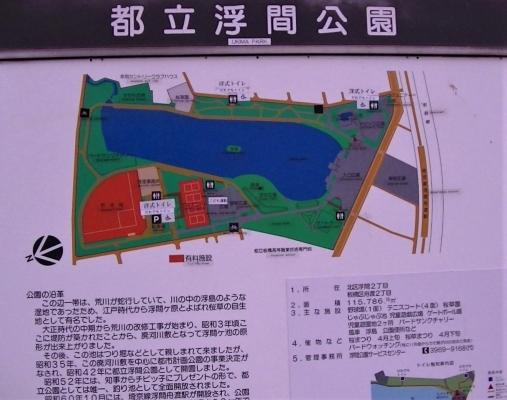 20201浮間公園-8