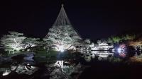 2019130昭和記念公園006