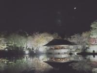 2019130昭和記念公園008