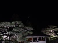 2019130昭和記念公園020