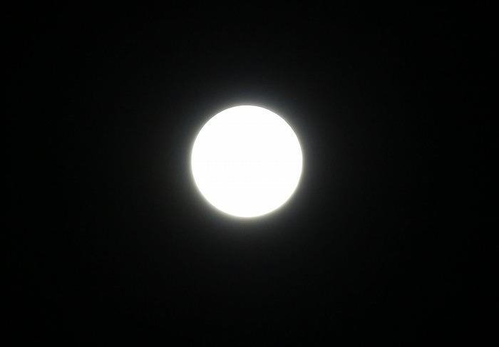 望遠レンズで撮る 1 9 14