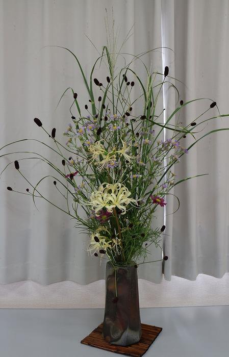 秋の彼岸の野の花たち 1 9 17
