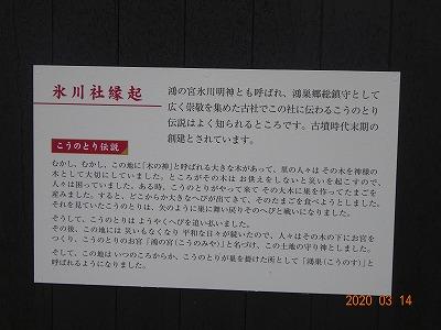 kounosu_002.jpg