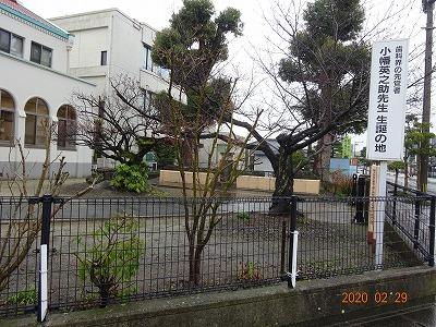 nakatsu_041.jpg