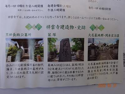 tokyo_shibuya_004.jpg