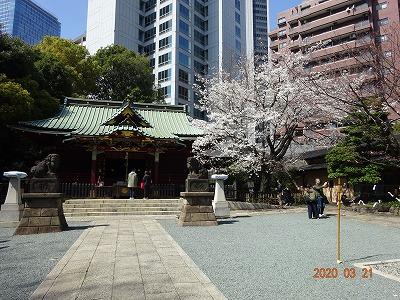 tokyo_shibuya_013.jpg