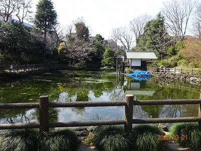 tokyo_shibuya_034.jpg