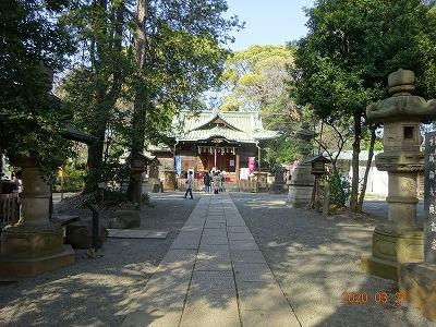 tokyo_shibuya_041.jpg