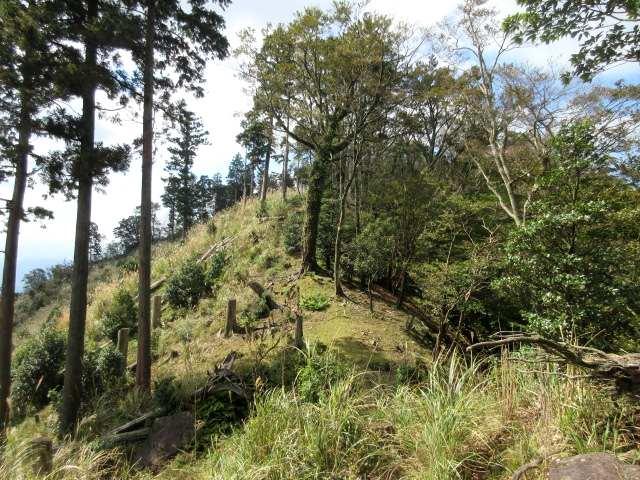 IMG0044JPG岳女キ山への径