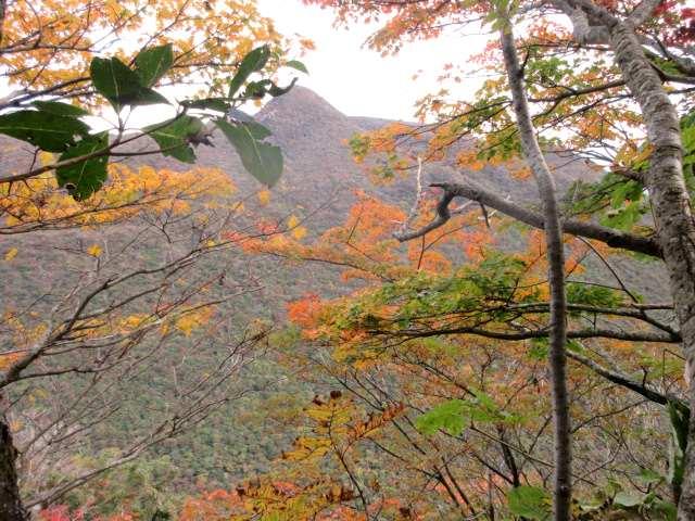 IMG0030JPG紅葉と黒岳