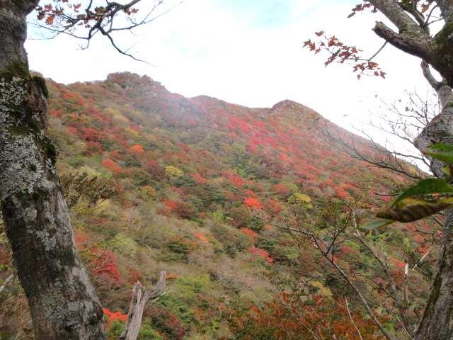 IMG0042JPG米窪斜面の紅葉