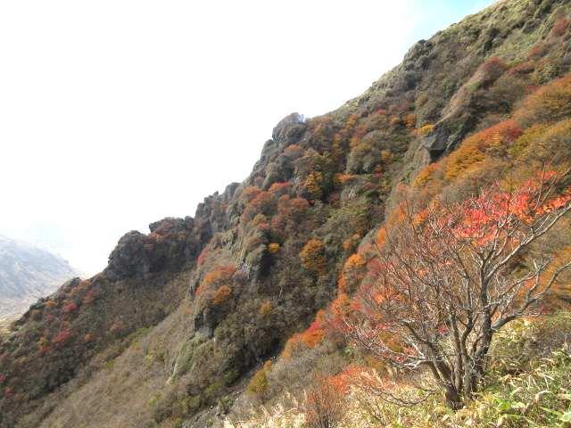 IMG0095JPG南峰斜面の紅葉