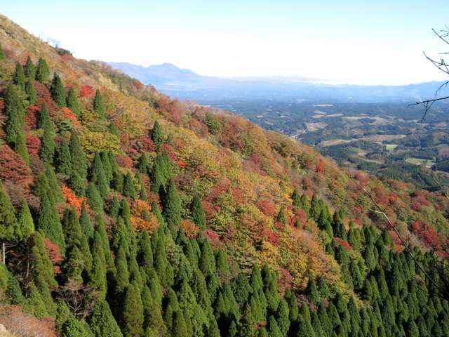 IMG0015JPG山腹の紅葉と九重山塊