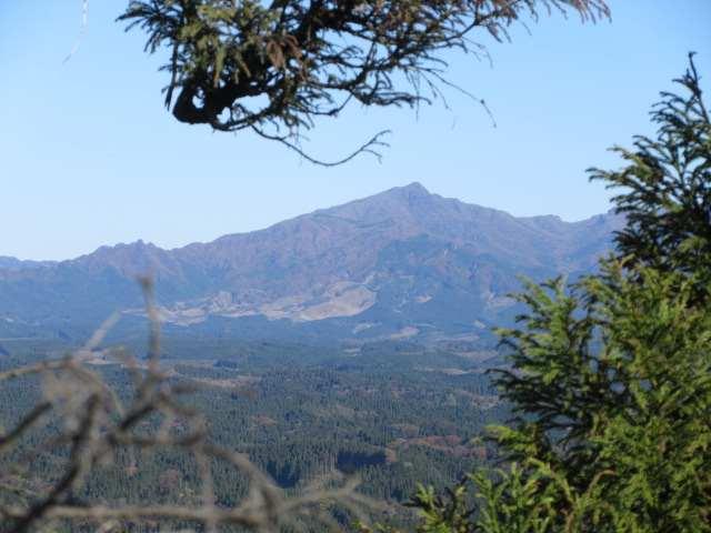 IMG0119JPG樹間越しに祖母山