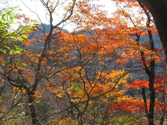 IMG0037JPG岳滅鬼山の見える