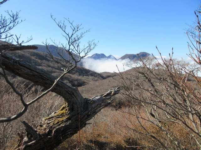 IMG0065JPG樹間から三俣山