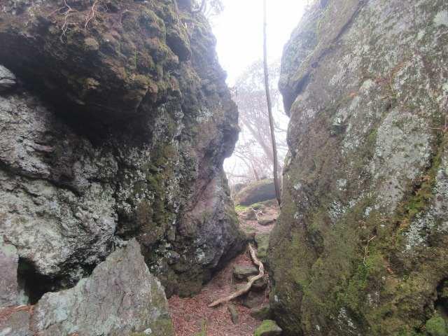 IMG0076JPG並ぶ大岩