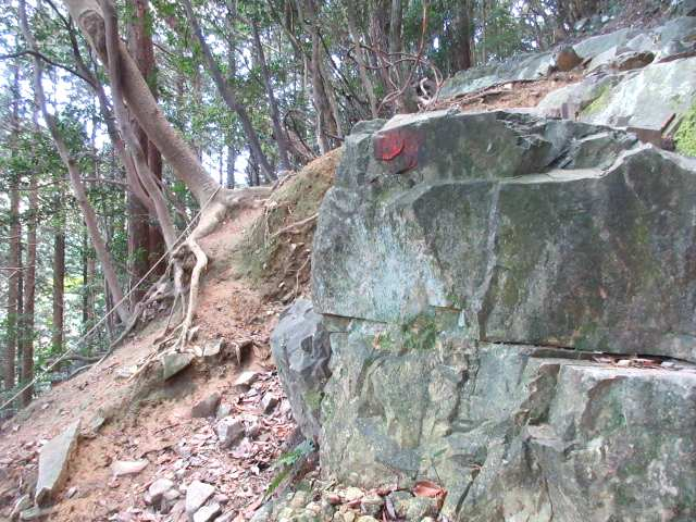 IMG0005JPG岩場のロープ