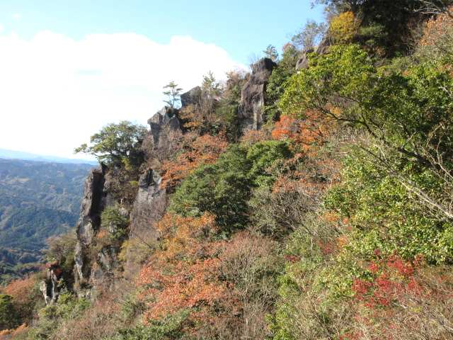 IMG0060JPGねこ山の紅葉1