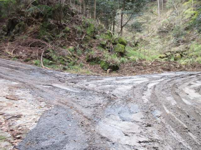 IMG0009JPG山水が流れる林道