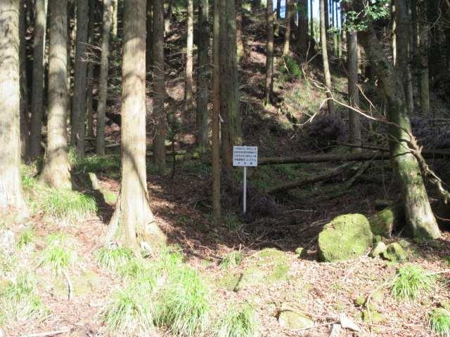 IMG0058PG林道カーブの標板この奥に取り付き点