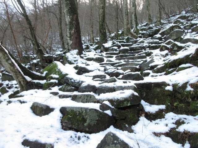 IMG0012JPG雪の階段