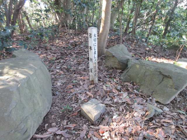IMG0042JPG岩尾山三角点