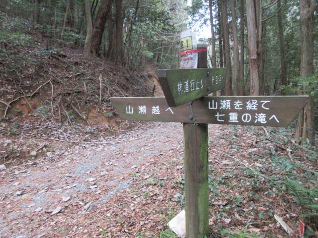 IMG0078JPG林道から山瀬へ