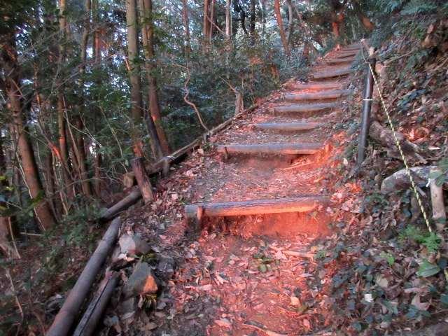 IMG0006JPG朝焼けの登山道