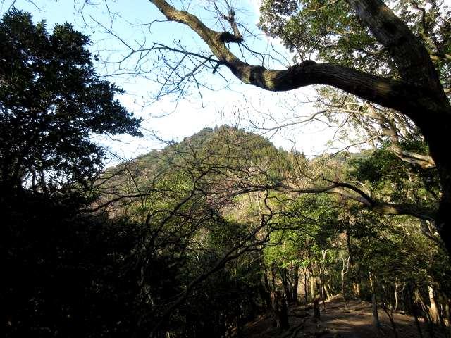 IMG0027JPG大嶽山