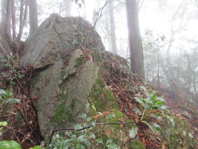 IMG0025JPG山頂の大岩