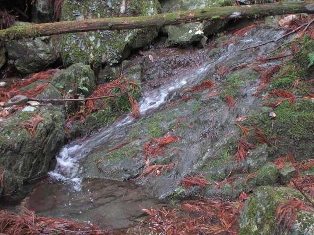 IMG0053JPG小滝が続く