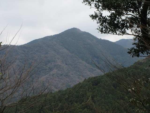 IMG0028JPG弓張岳