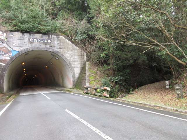 IMG0034JPGトンネル横に下りてきた