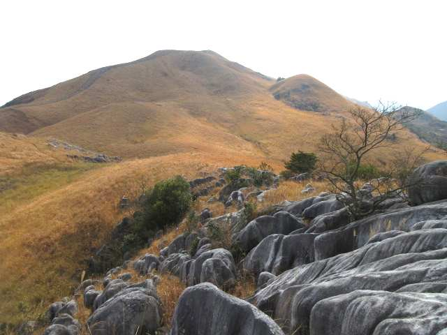 IMG0017JPG岩山から周防台権現山