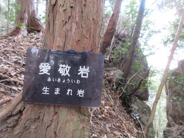 IMG0021JPG愛敬岩