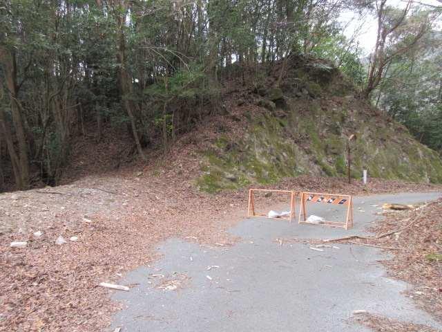 IMG0027JPG林道横断