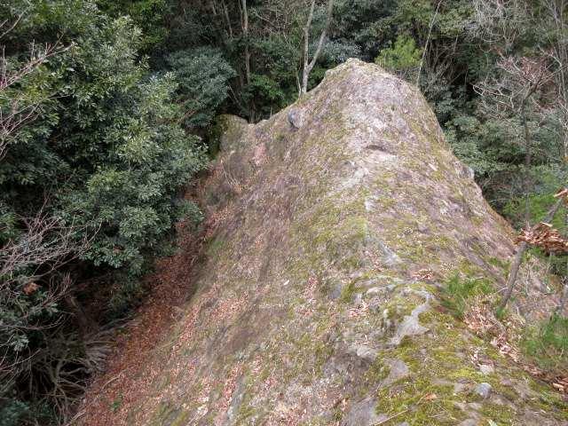 IMG0029JPG岩稜