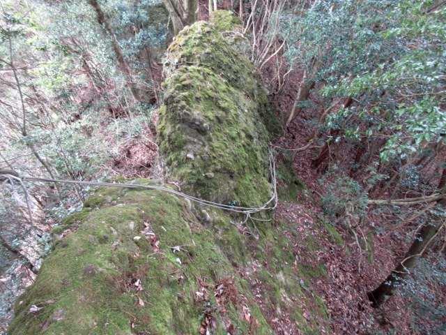 IMG0033JPG糸ヶ峰の岩稜