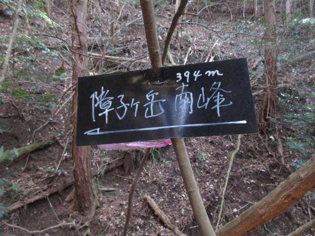 IMG0010JPG南峰への標識